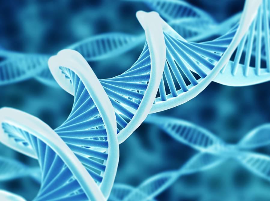 L'épigénétique, une révolution scientifique